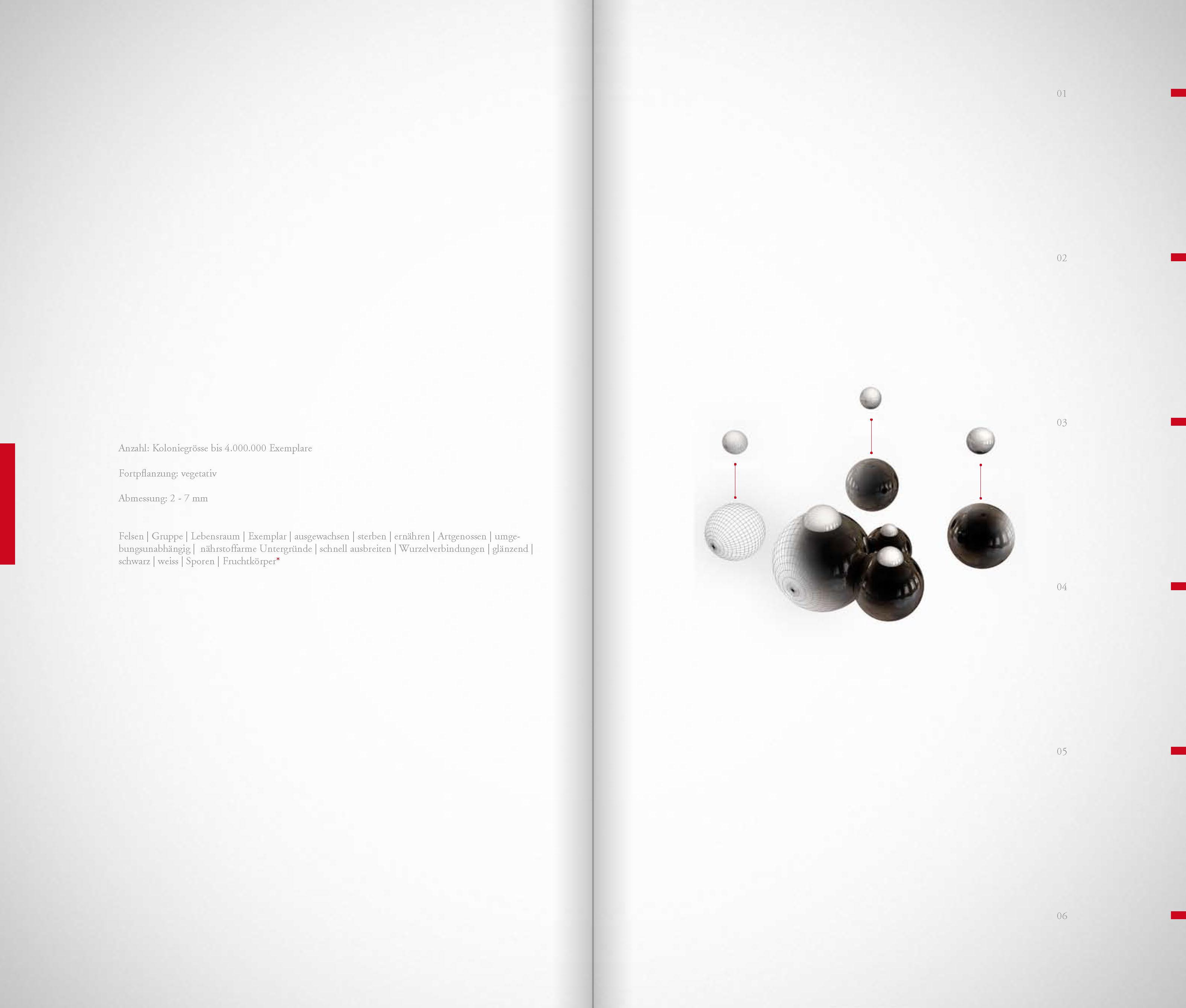 DIE_ART_DAS_BUCH_Seite_09