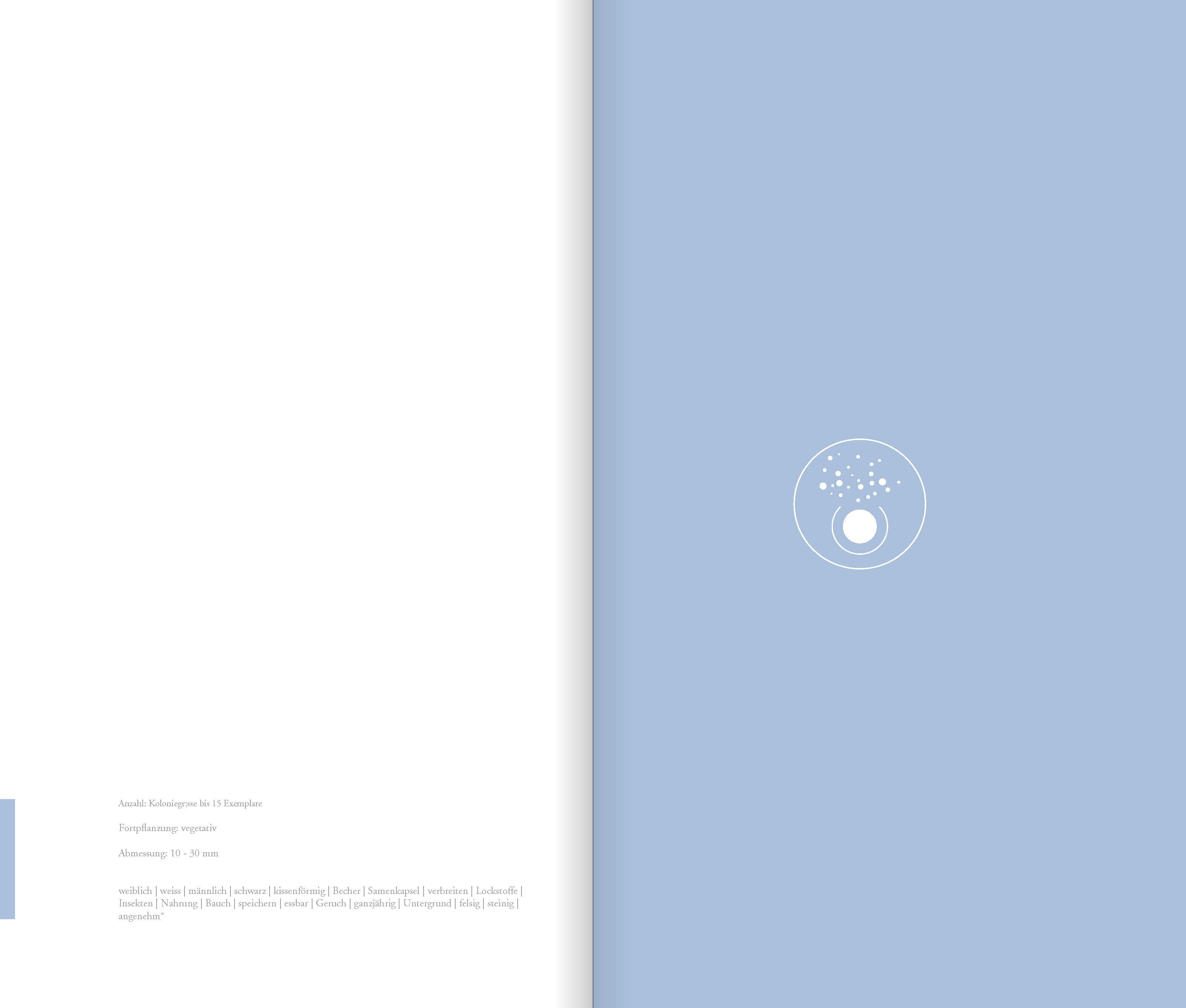 DIE_ART_DAS_BUCH_Seite_21