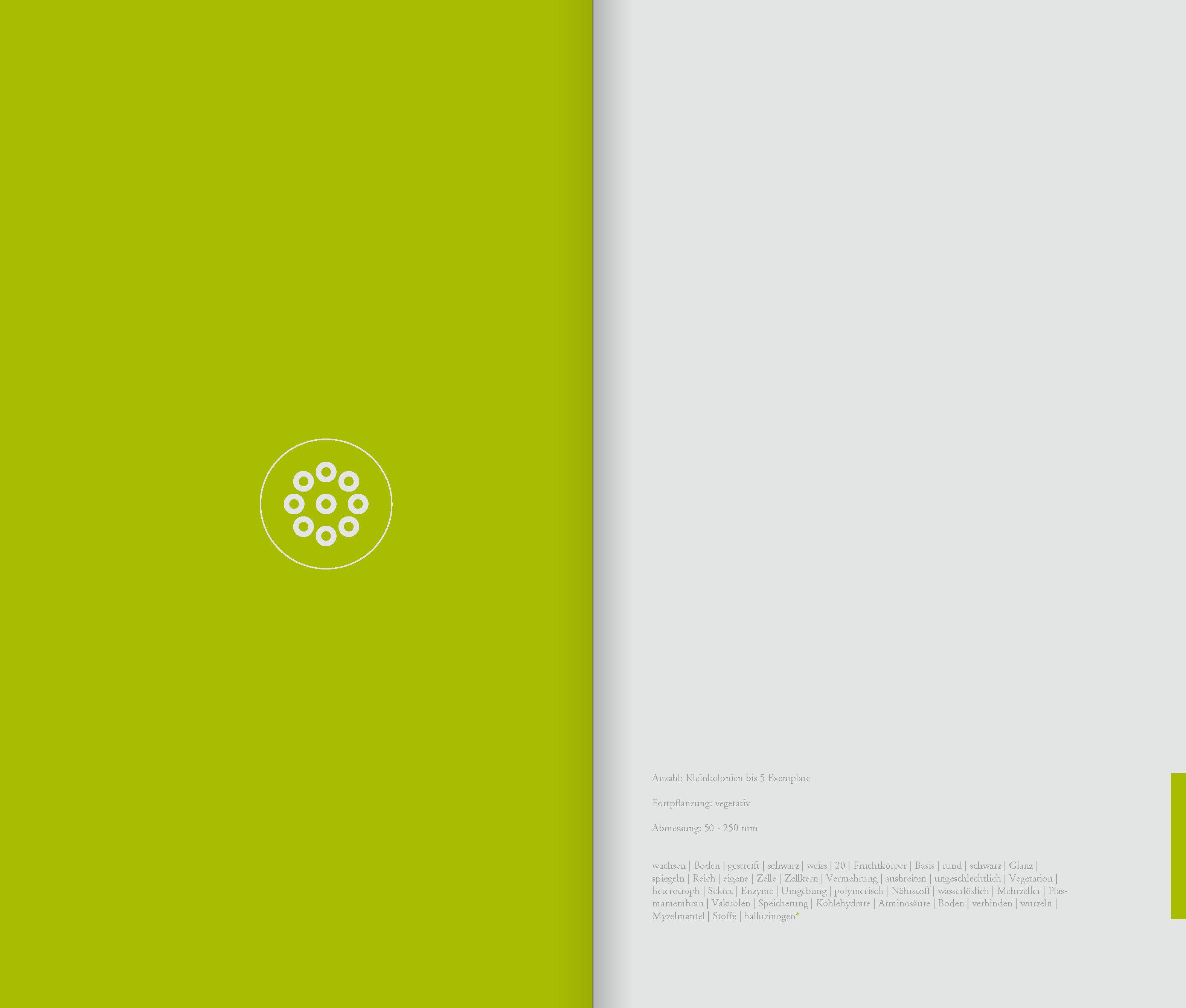 DIE_ART_DAS_BUCH_Seite_29