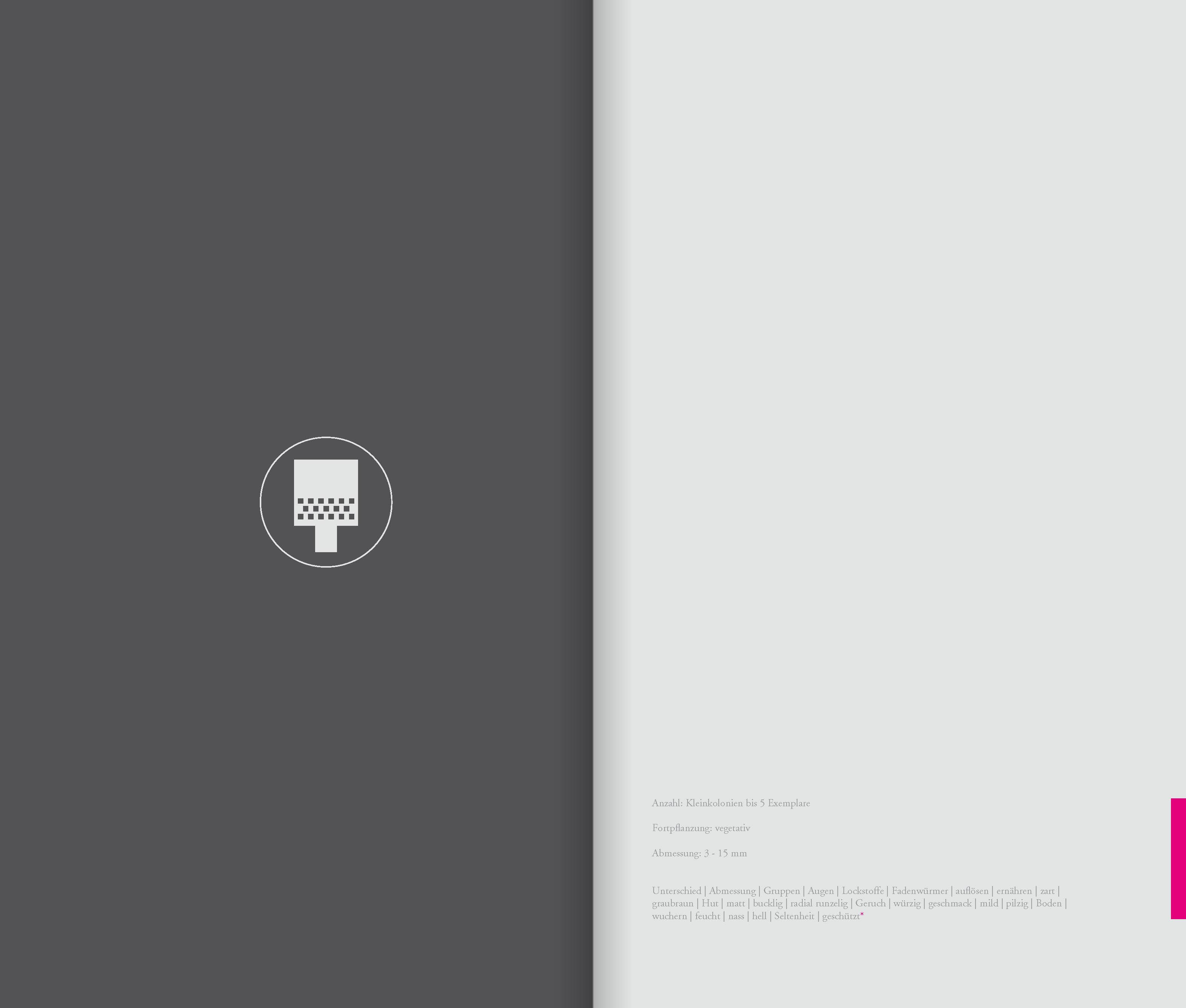 DIE_ART_DAS_BUCH_Seite_32