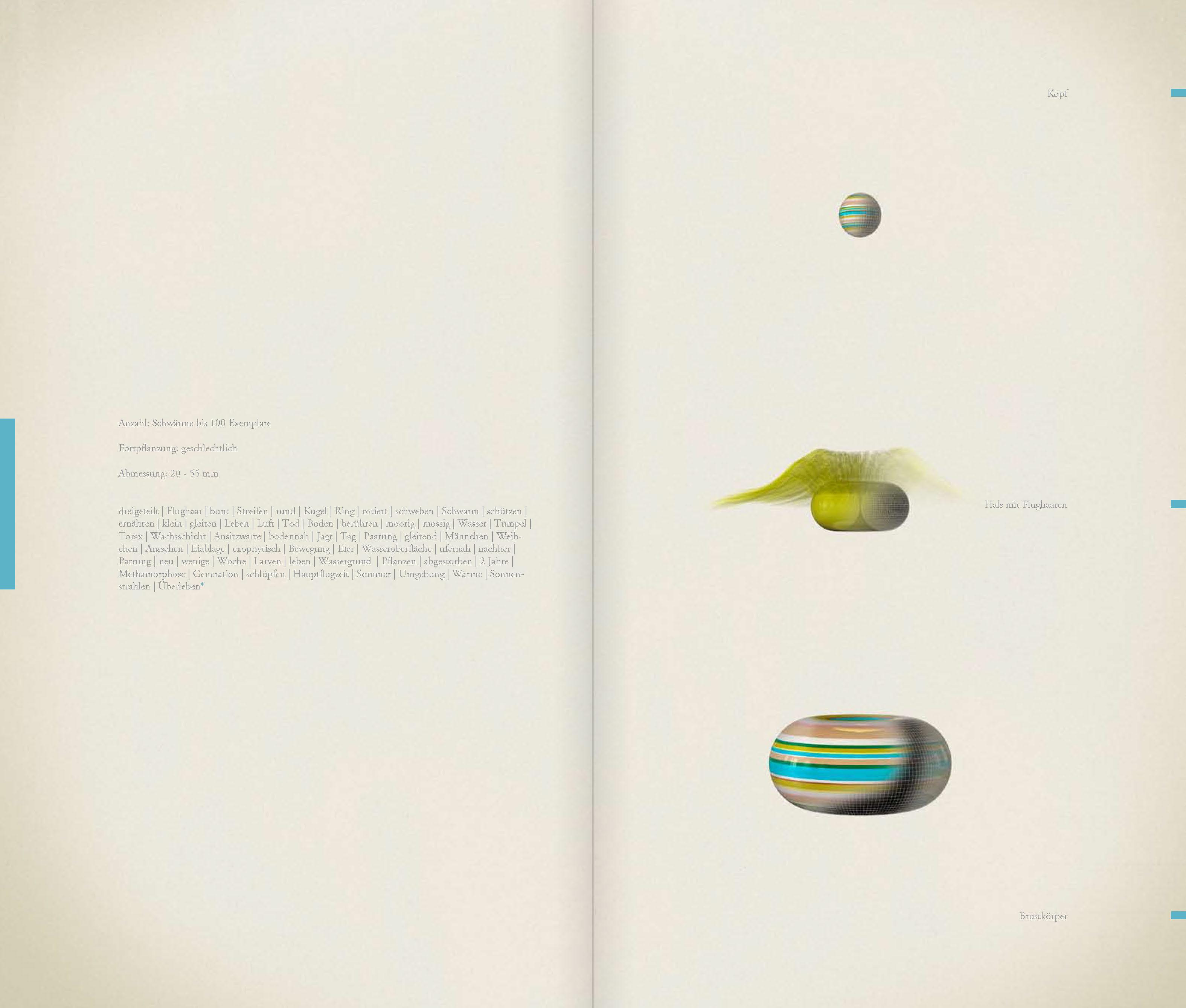 DIE_ART_DAS_BUCH_Seite_35