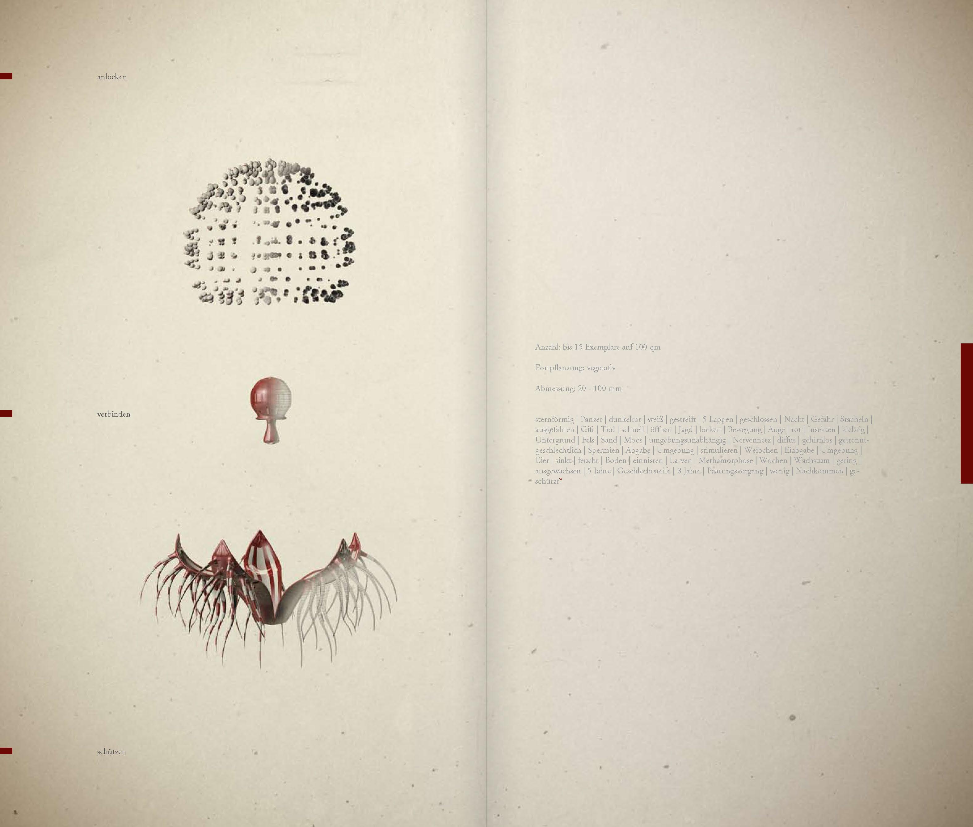 DIE_ART_DAS_BUCH_Seite_38