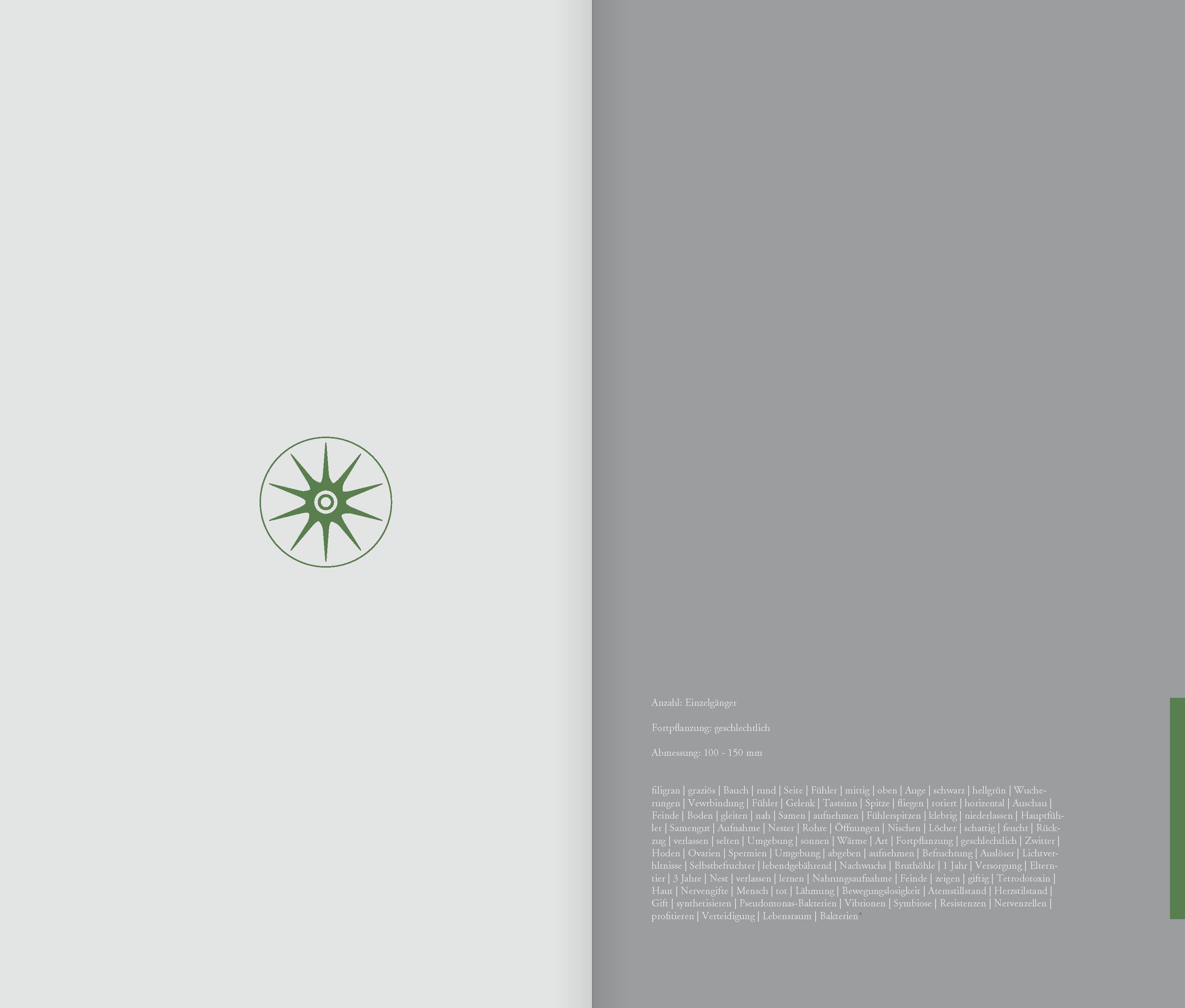 DIE_ART_DAS_BUCH_Seite_42
