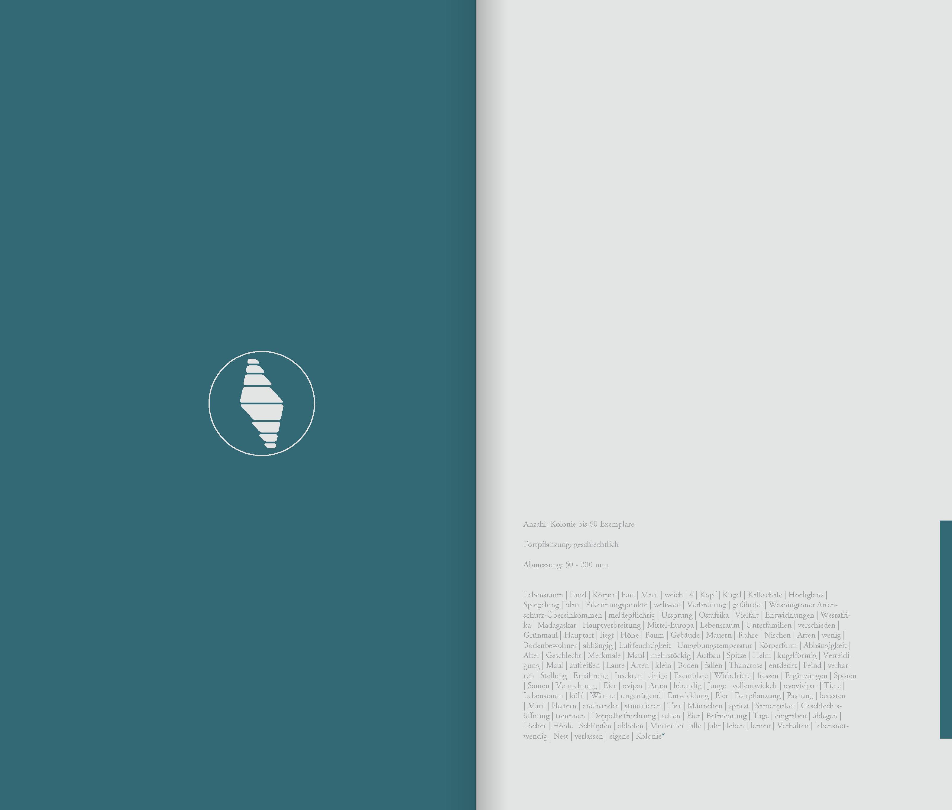 DIE_ART_DAS_BUCH_Seite_52