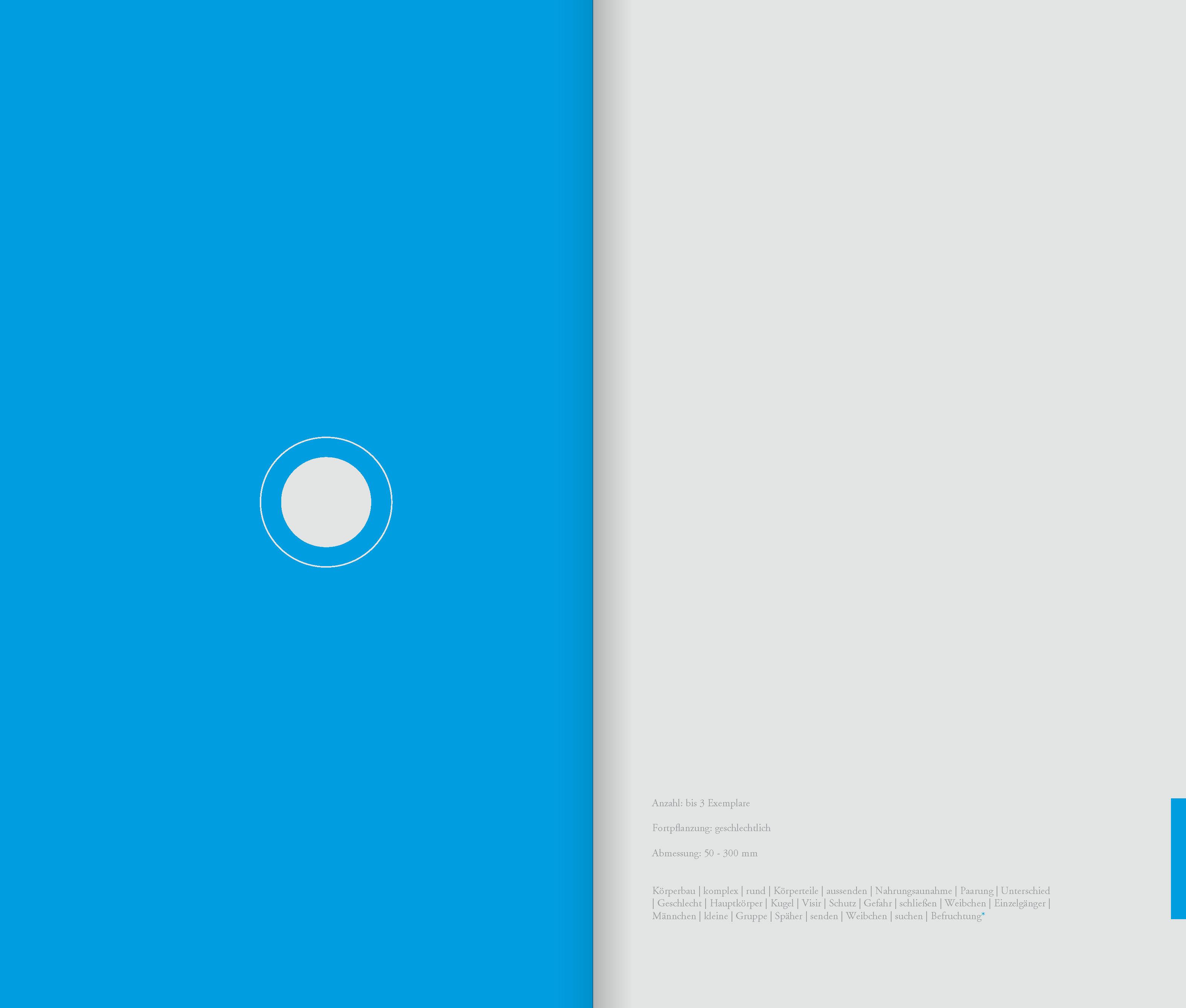 DIE_ART_DAS_BUCH_Seite_56