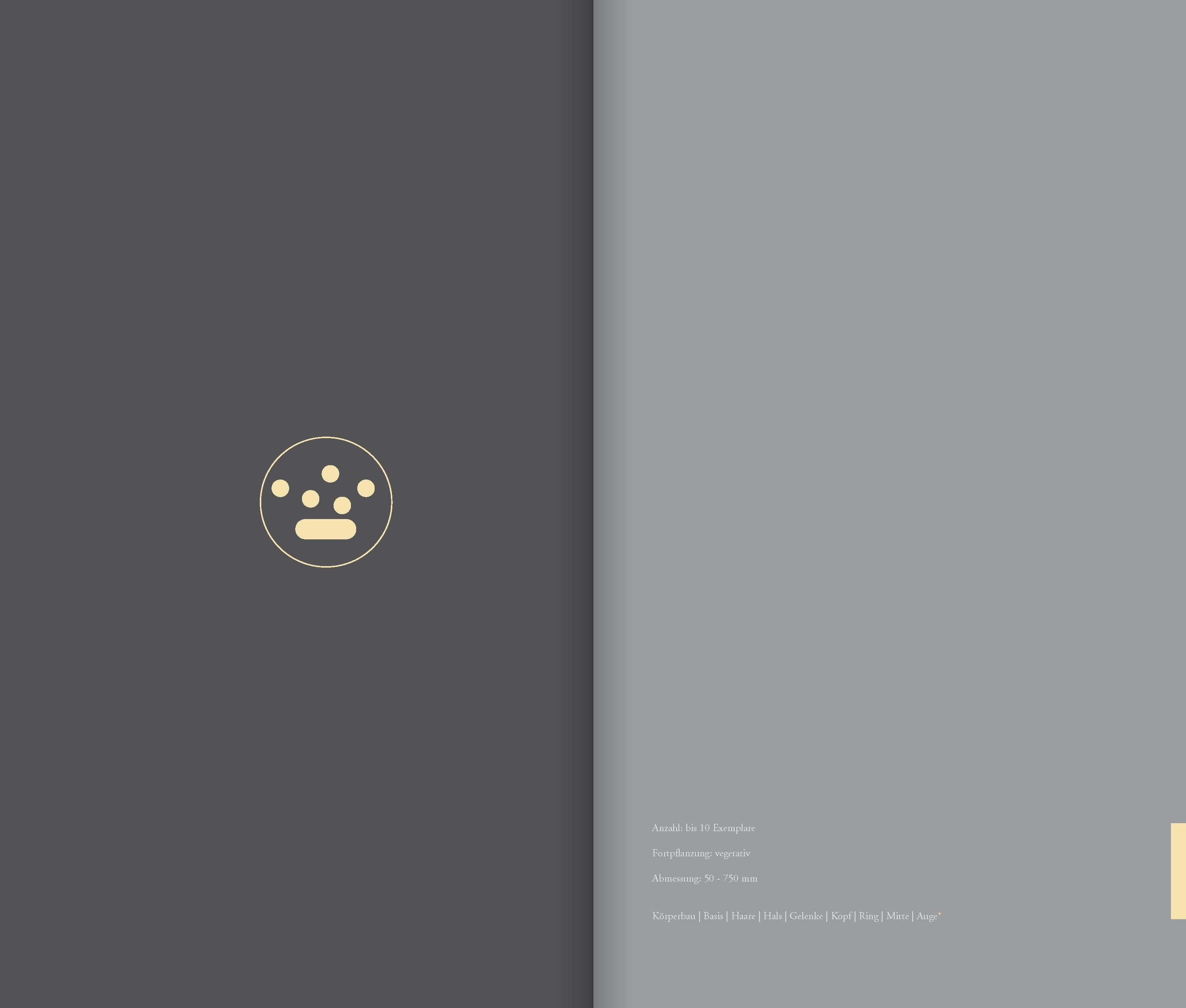 DIE_ART_DAS_BUCH_Seite_72